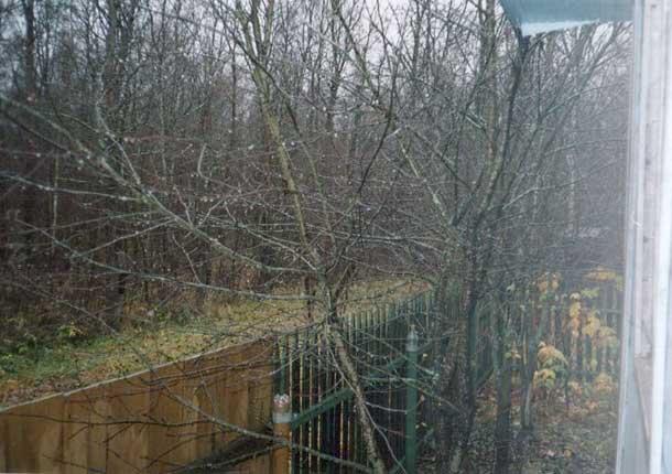 Затяжные дожди ноября