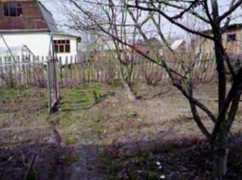 Апрель в саду